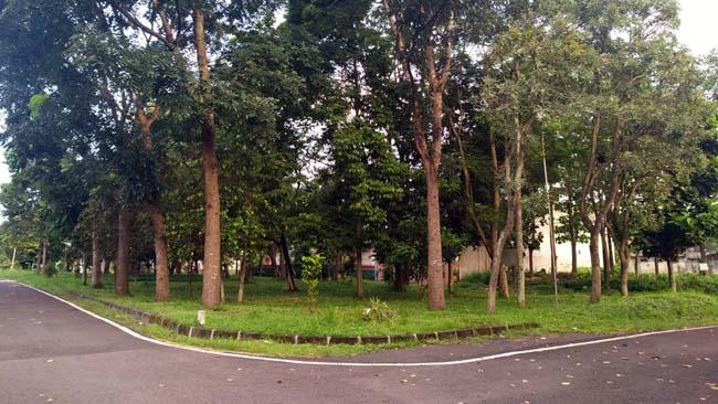 Taman Indragiri yang bakal digunakan Taman Lansia Indragiri. (rhd)