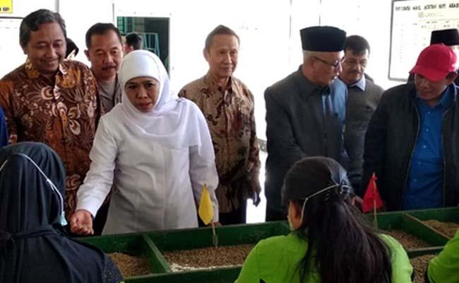 PUNYA PROSPEK: Gubernur Jatim Khofifah Indar Parawansa didampingi Bupati KH. Salwa Arifin melihat para pekerja pabrik pengolahan kopi di Bondowoso