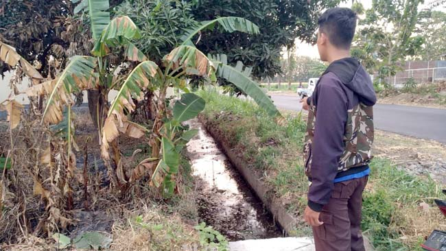 LIMBAH RPH: Warga saat menunjuk asal bau busuk aliran limbah RPH di Desa Sumberkolak Panarukan. (im)